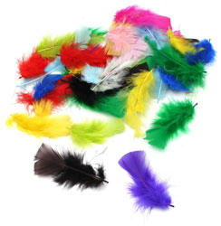 Assorted Craft Feathers 10g Bumper Pack