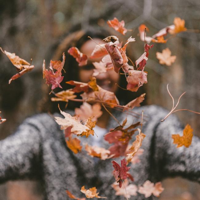 autumn leaves square